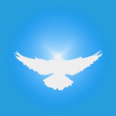 Silhouette of a dove in the sky. A dove as symbol of piece or as holy spirit.