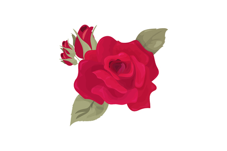 Vector illustration: Rose flower bud isolated. Cut out maroon rose with leaflets made in a vintage style.
