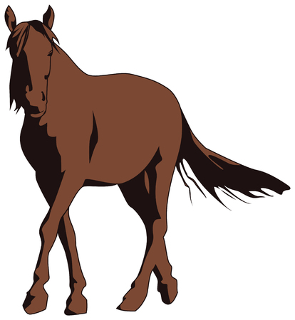 Brown horse isolated on white background, vector. Banque d'images - 127890609