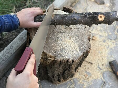 The log lies on the stump and saws it with a hand saw. 写真素材