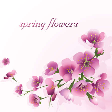 Spring flowers on a light pink background. Design for the spring season, wedding invitation, discount coupon and free space for text. Vector.