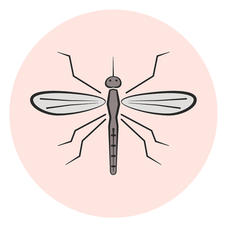 parasite: Outline mosquito vector icon, colored gray gnat icon