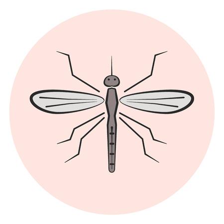 Outline mosquito vector icon, colored gray gnat icon