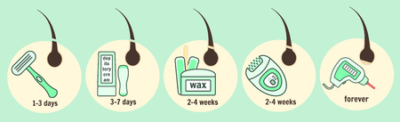 毛の取り外し方法インフォ グラフィック、脱毛と脱毛器、毛髪成長再生の時間  イラスト・ベクター素材