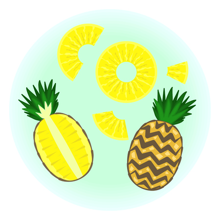 Flat vector ripe pineapple set - fruit split in a half , quarter, pine circle without rind sliced on half, quarter and piece. Cute colorful summer fruit