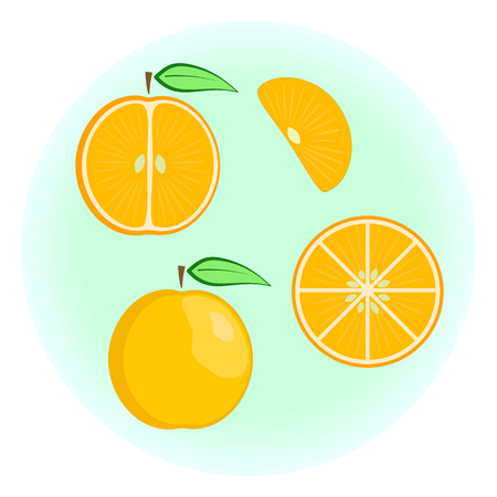 pulp: Flat vector orange set - fruit split in a half along and across, fruit circle and wedge, a slice or a segment of an orange. Cute colorful summer fruit