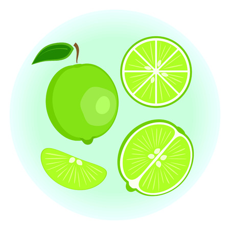 cantle: Flat vector exotic ripe green lime set - fruit split in a half along and across, lime wedge. Cute colorful tropical summer fruit