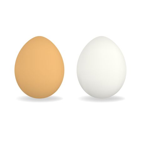 Set of white and brown vector realistic chicken eggs with shadow isolated on white background. Egg mockup for market or store design, easter advertisement