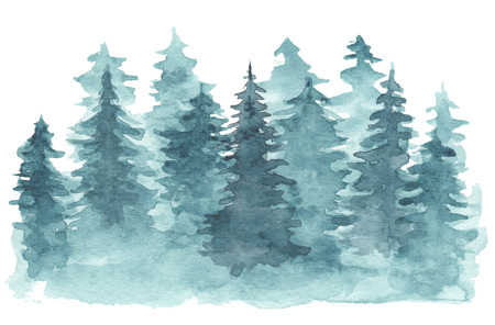 Beautiful watercolor background with mystery blue coniferous forest. Mysterious fir or pine trees in mist illustration for winter Christmas design, isolated on white background 版權商用圖片