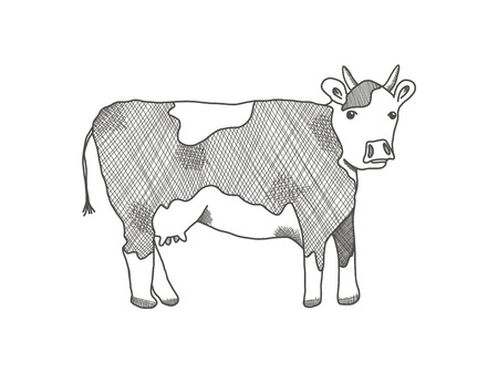 Black outline cow on white background. Cute sketchy hand drawn cows illustration with blobs and horns, freehand line art style