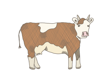 Brown outline cow on white background. Cute sketchy hand drawn beige cows illustration with white blobs and horns, freehand line art style