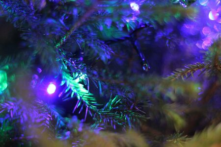 Grain and blurred holiday background with deep blue and purple lights on green Christmas tree branches. Happy New Year image for winter decoration, banner design, with place for text