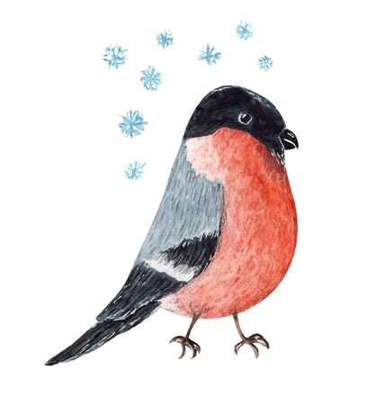 Cute red and black watercolor Christmas bullfinch bird. Cartoon painting winter robin and snowflakes for New Year greeting card design, sticker, banner decor 写真素材