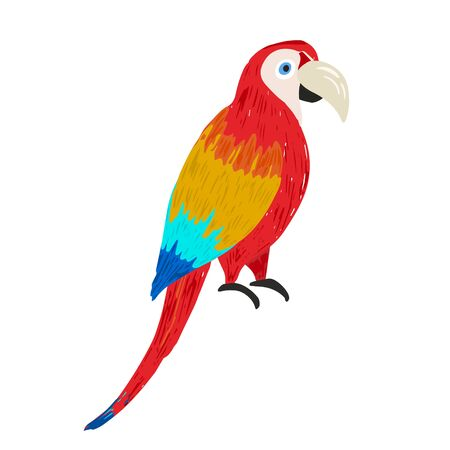 Cute vector hand drawn sketch of bright colorful ara macaw. Illustration of wild tropical parrot bird for kids print design, logo, sticker