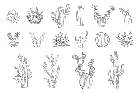 Collection of isolated outline black vector cactus and succulents elements. Cute hand drawn textured doodle cacti illustrations for pattern design, logo, coloring book, decor