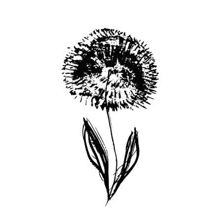 Textured hand drawn chinese black ink dandelion flower. Grunge sketch vector inky floral summer blossom for pattern design, greeting card decoration, print, sticker Vectores
