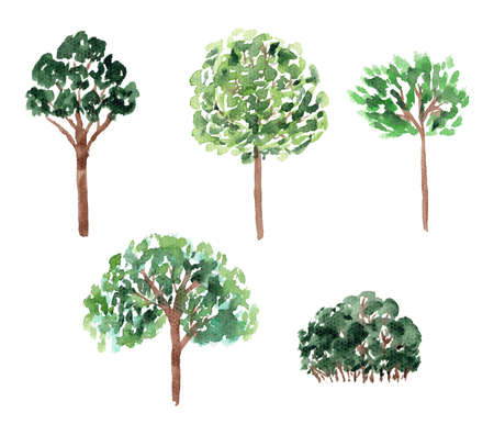 Set of bright green watercolor deciduous trees illustrations. Collection of watercolour oak, apple, ash tree for greeting cards and banner decor, stickers 写真素材