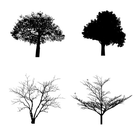 bareness: illustration with trees silhouette isolated on white background