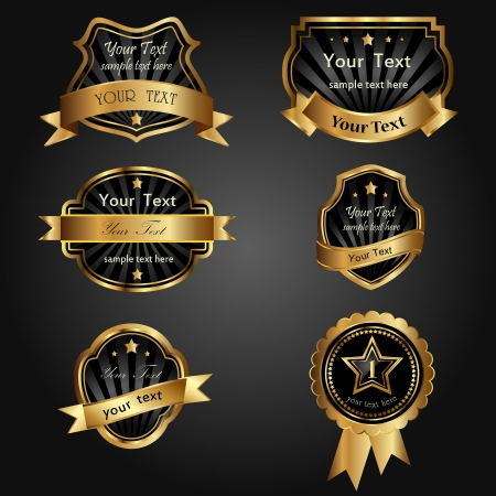 vector set black gold-framed labels