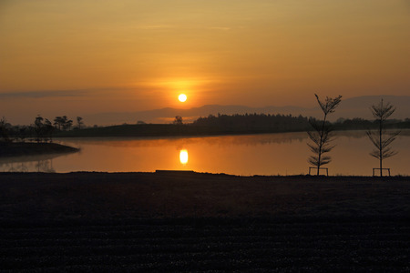 Sunset silhouette at green tea plantation in the morning at chiangrai, Thailand