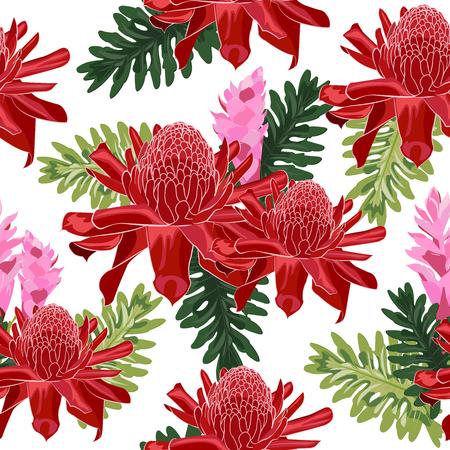 Antorcha roja jengibre de patrones sin fisuras con hojas tropicales sobre fondo blanco.