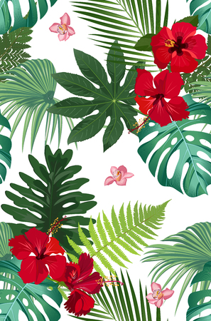 Hojas tropicales de patrón transparente de vector con flor de hibisco rojo y orquídea rosa sobre fondo blanco