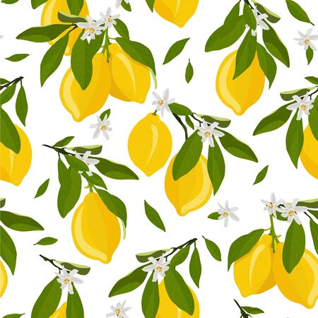 Lemon fruits seamless pattern with flowers and leaves on white background. citrus fruits vector illustration.