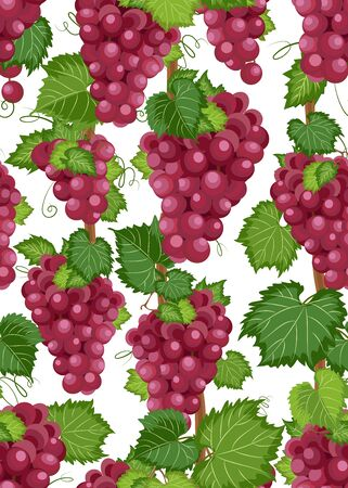 Grape vine seamless pattern and leaves on white background, Fresh organic food, Red grape bunch pattern background, Fruit vector illustration.