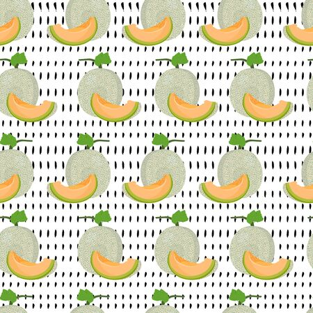 Melon whole and slice seamless pattern on white background, Fresh cantaloupe melon pattern background, Fruit vector illustration.