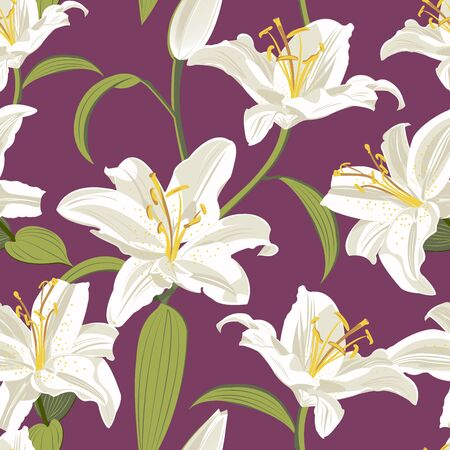 Lily flower seamless pattern on purple background, White lily floral vector illustration
