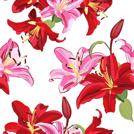 Lily flower seamless pattern on white background, Pink and Red lily floral vector illustration Illustration