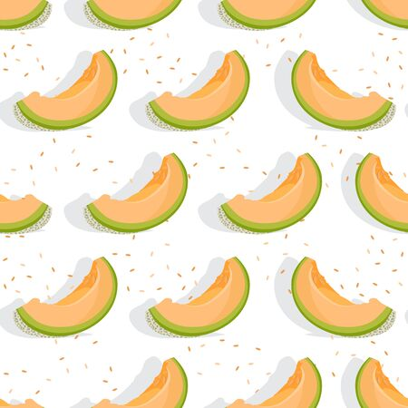 Melon sliced seamless pattern on white background with shadow, Fresh cantaloupe melon pattern background, Fruit vector illustration.