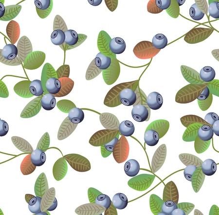 블루 베리 패턴 스톡 콘텐츠 - 31425754