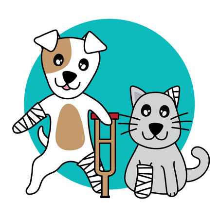 Vector character dog and cat hurt, leg broken on white background.
