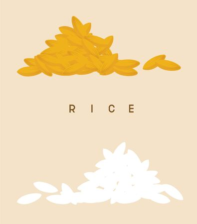 set vector of rice and wheat
