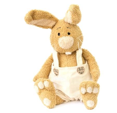 plush toy: Funny plush rabbit. Children toy