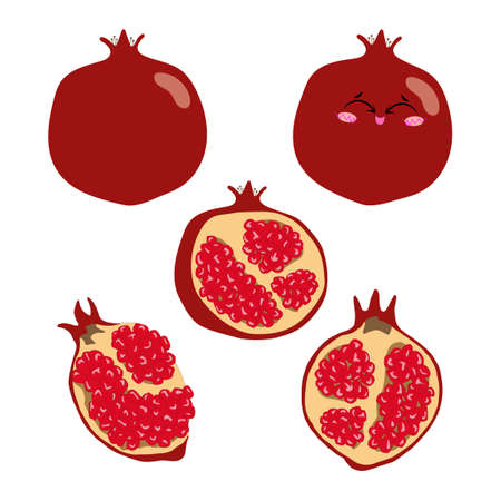 Collection of vector illustrations of pomegranate whole, half and slices in flat style. Set of red pomegranate on a white background for design