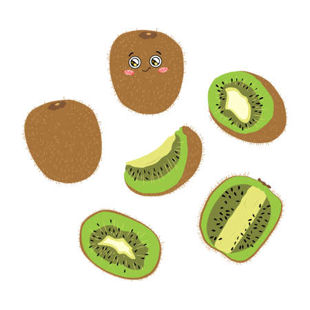 Vector color illustration of whole, half and slice kiwi on a white background in flat style. Bright set of kiwi berries for design