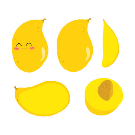 Vector color illustration of a whole, half and slice mango on a white background in a flat style. Bright set for design