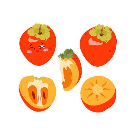 Collection of vector illustrations of persimmon whole, half and slices in a flat style. Set of juicy persimmons on a white background for design 일러스트