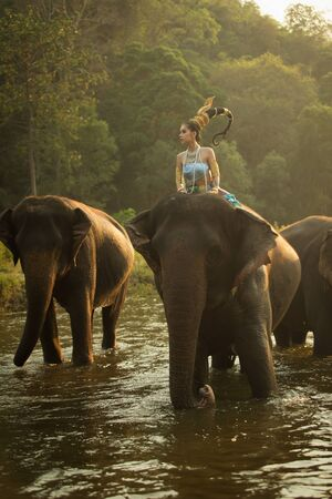 Thai Woman In Traditional Costume Of Thailand and elephant Stock Photo