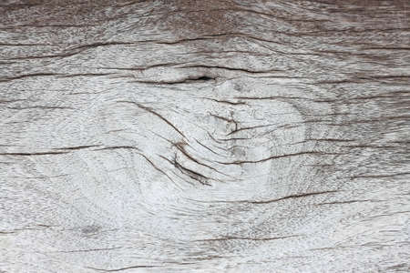 Detail of a wood  photo