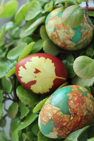 onion peel: Easter eggs painted in traditional red color of the oldest natural dyes - onion peel Stock Photo