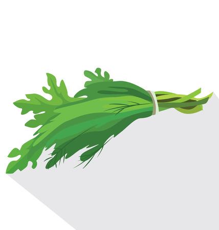 A bunch of fresh herbs: parsley, fennel, lettuce