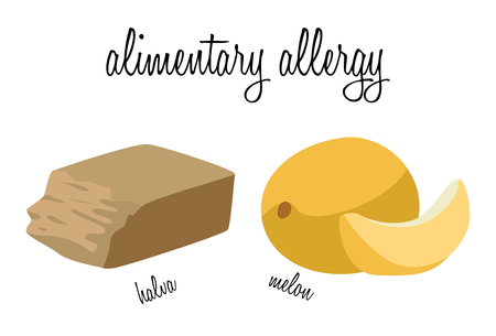 alimentary: Halva and melon - foods that cause food allergies.  vector illustration.