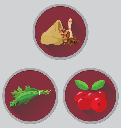 potherb: grains, herbs and berries - useful products. vector illustration.