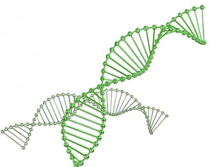 генетика: ген в ДНК. 3d