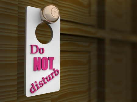 Do Not Disturb Sign. 3d photo