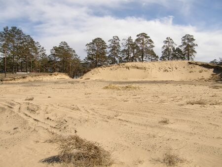 siberia: Sandy hill in the forest. Siberia