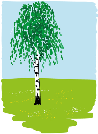 Birch, green grass, flowers and blue sky Illustration